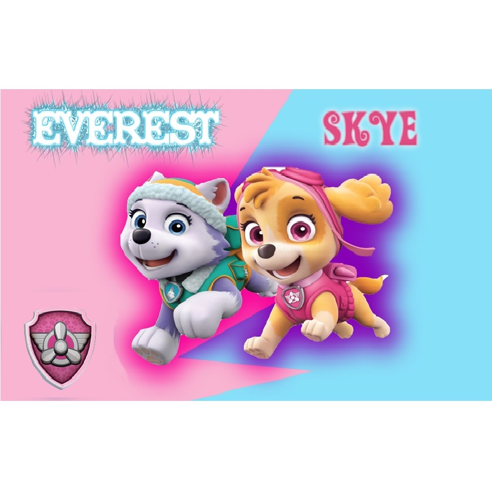 Paw Patrol Cake Decorations For A Girl