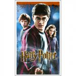 HARRY POTTER DH STICKERS