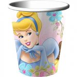 DISNEYS FANCIFUL PRINCESS CUP