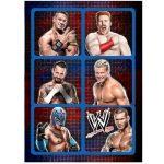WWE Sticker Sheets