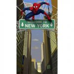 SPIDERMAN HERO DREAM PARTY DOOR BANNER