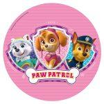 Pink Paw Patrol Cake Image