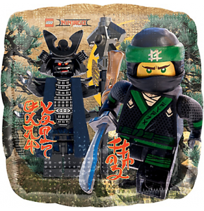 This Party Started » Product Categories » Lego Ninjago Party