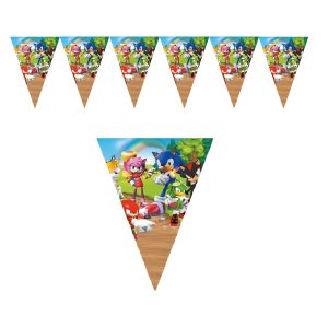 Sonic the Hedgehog Flag Banner